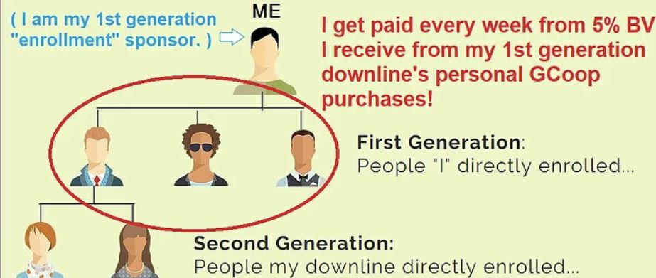 GCoop 1st Generation