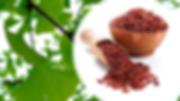 Chol Care Red Yeast Rice Gingko.PNG