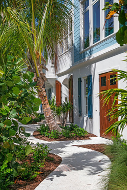 Outdoor landscaping with palm tree over the walkway