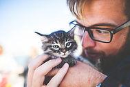 Animal Care.jpg