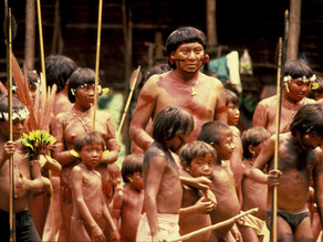 THE IMPACT OF ILLEGAL GOLD MINING ON BRAZIL'S INDIGENOUS COMMUNITY AND ENVIRONMENT