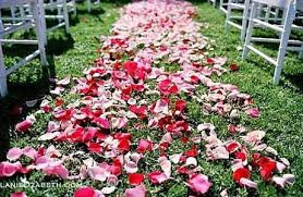 Rose petal aisle runner sunshine coast