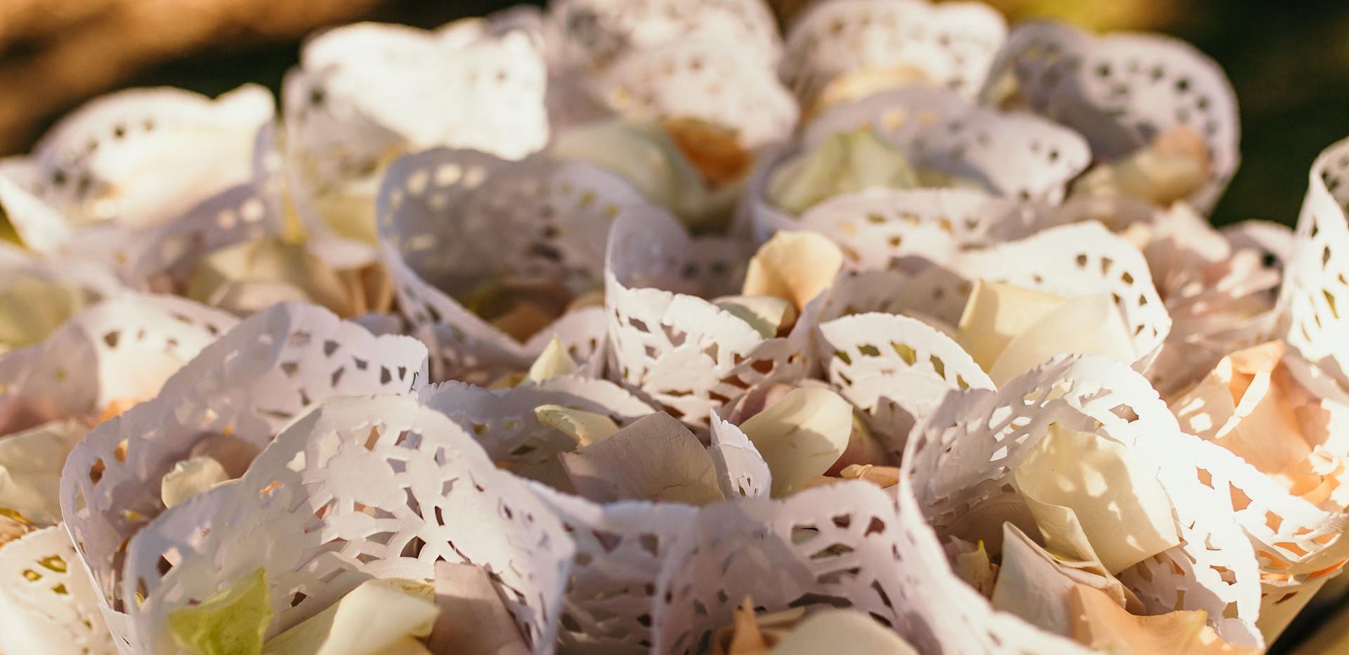 Rose petal cones Sunshine Coast