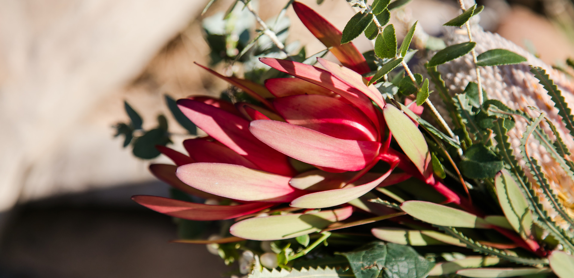 native flowers sunshine coast wedding de