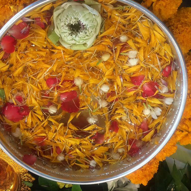 10-20 Spiritual Properties of Plants