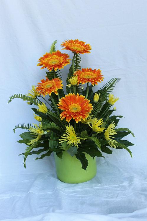 Gerba Flower Arrangement
