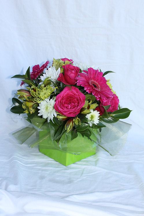 Gerba & Rose Arrangement