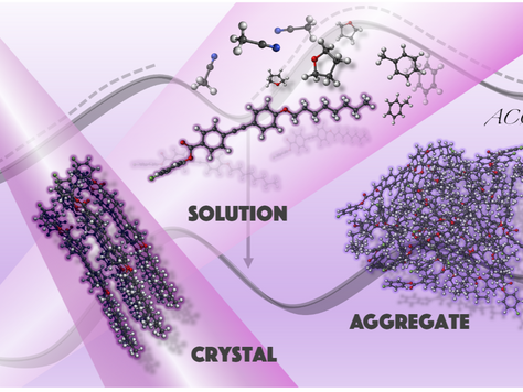 """In silico investigation of the aggregation-caused quenching: the """"tolane-based molecule"""" c"""