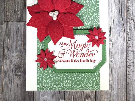 Poinsettia Place Suite - Magic & Wonder Card
