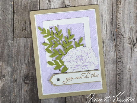Soft Encouragement Card Prized Peony