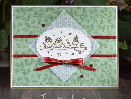 Have a Hoot Stamp Set with Poinsettia Place Designer Series Paper