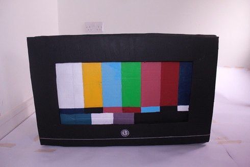 TV set with changeable screen