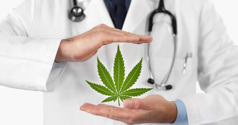 Cannabis terapeutica : Cosa stiamo aspettando ad aiutare chi soffre?