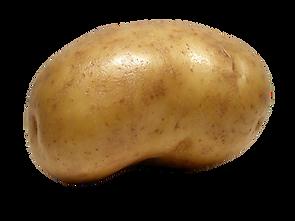 http___pluspng.com_img-png_potato-hd-png