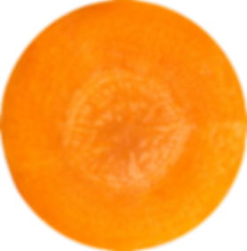 carrot slice.png