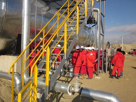 Oil DeSulphurization