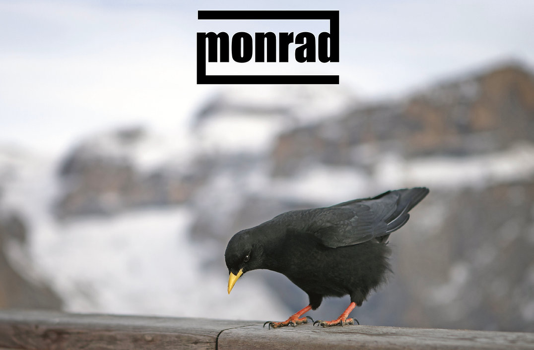 copertina_MONRAD Without Wired_trial.jpg