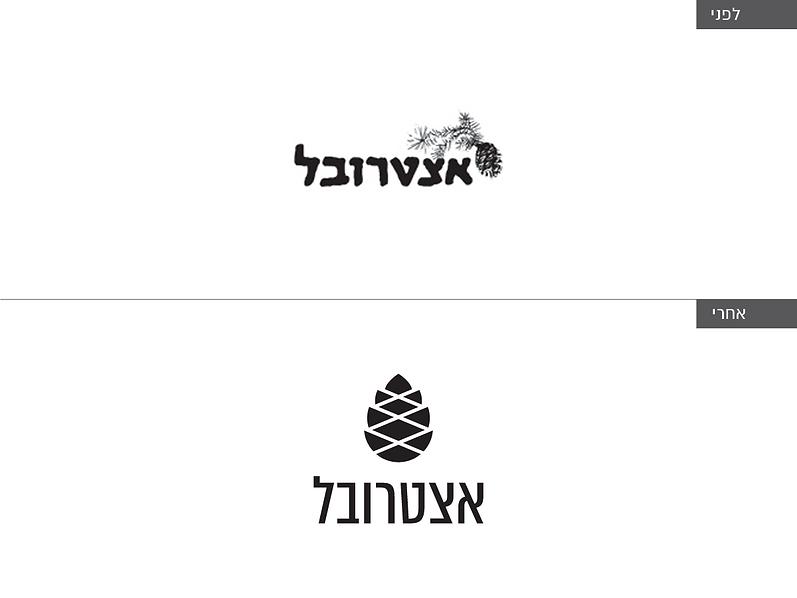 לוגו לפני ואחרי