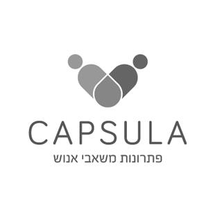 לחץ לצפייה במיתוג המלא | Capsula עיצוב לוגו