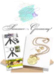 Giveaway Ad.jpg