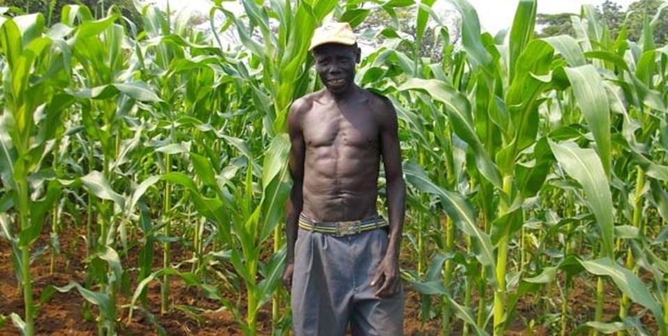 a_agri_sudan_edited.jpg