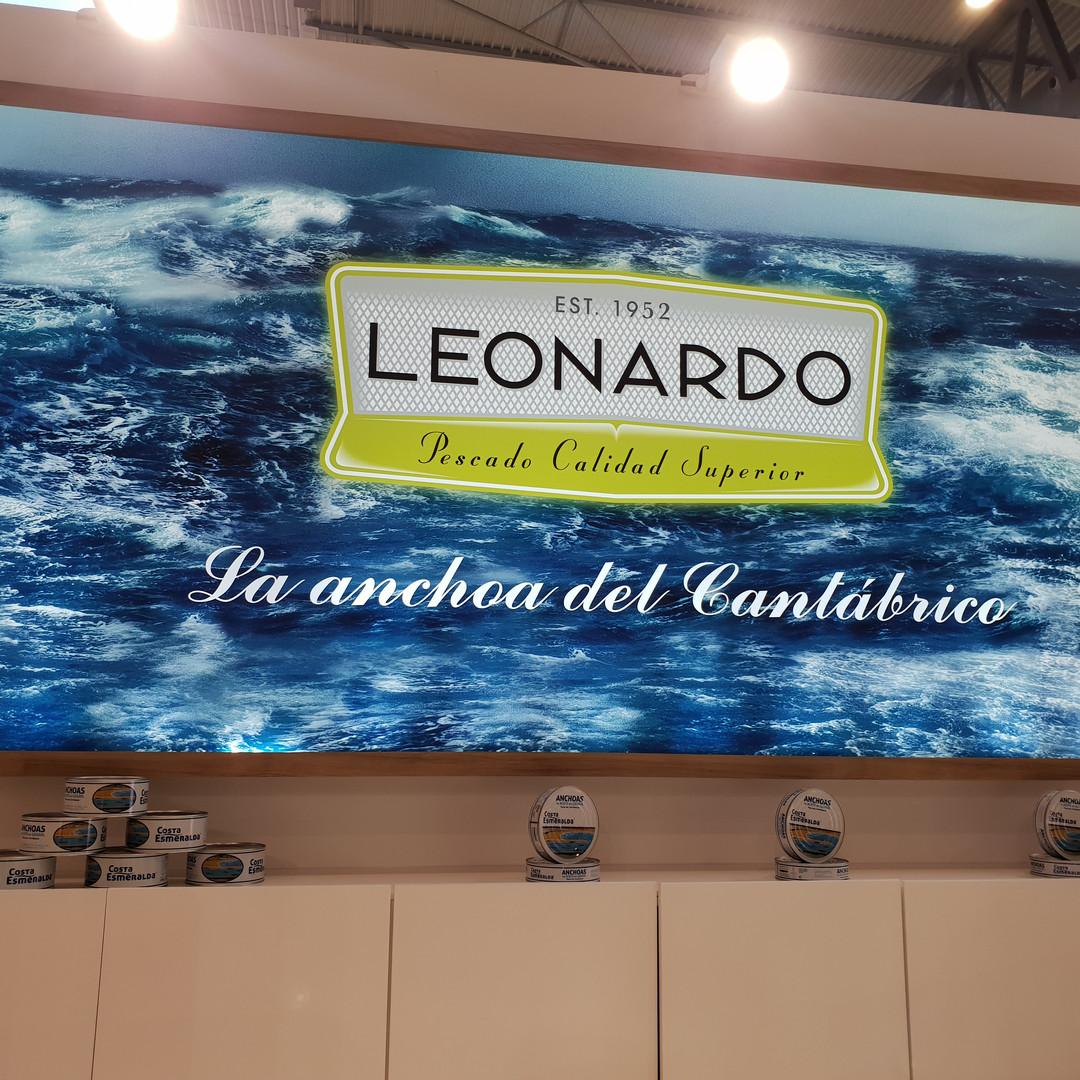 Leonardo the Cantabrian Anchovy