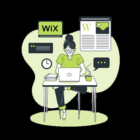 Audit de site web Wix