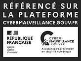 professionnel référencé cybermalveillance assisstance et prévention du risque numérique par l'état francais