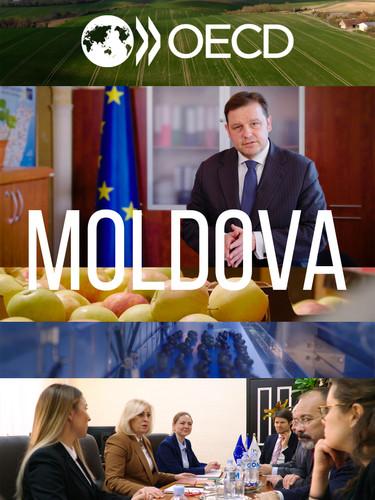 OECD Moldova (2020)