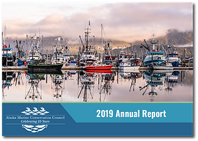 AMCC 2019 Annual Report - Cover Only.png