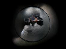 9k camera obscura 3.jpg