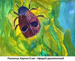Романчук Карина 9 лет - Афодий двупятнис