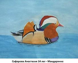 Сафарова Анастасия 14 лет - Мандаринка.J