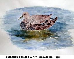 Василенко Валерия 12 лет - Мраморный чир