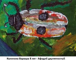Калинина Варвара 8 лет - Афодий двупятни