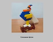 Сепханов Артем.jpg