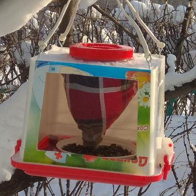 кормушка для птиц из вторсырья.jpg