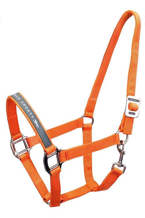 The world is orange: PROMO HALTER