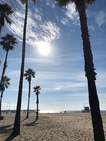 Venice Beach Skies