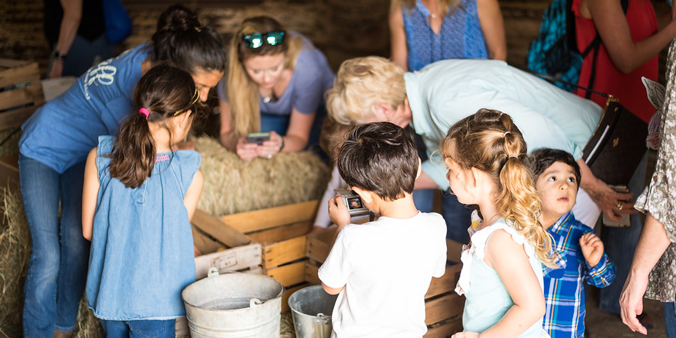 Spring on the Farm 2- May 4th 2019 (1)
