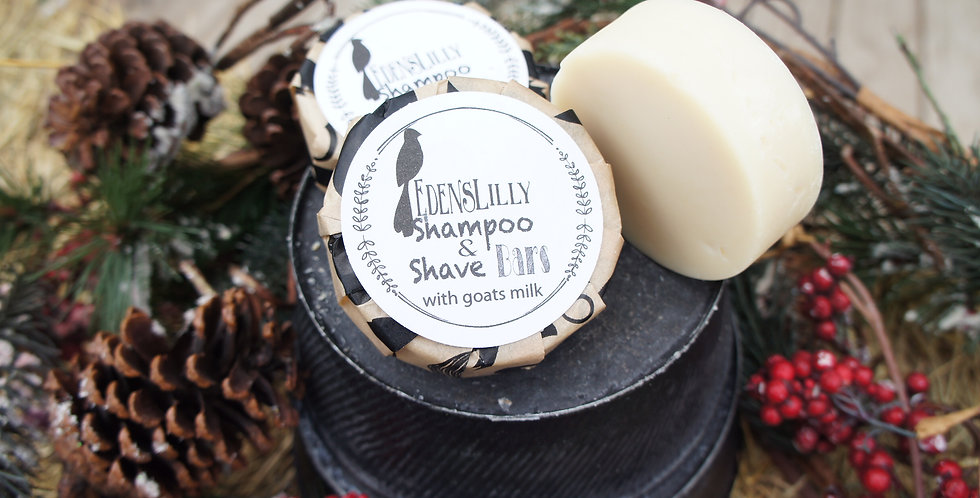 Shave and Shampoo Bar