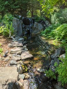 Lautner Pond.jpg
