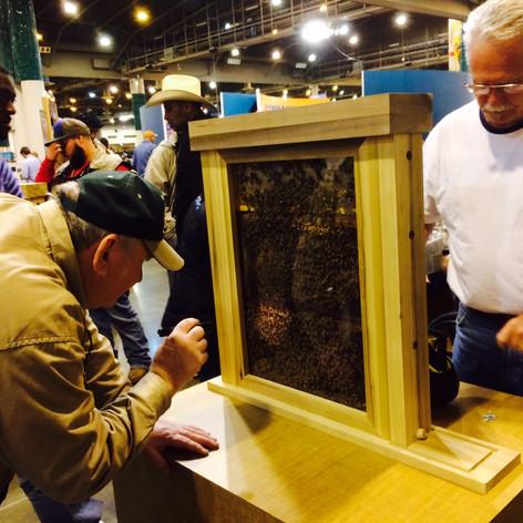 Rodeo Bee Exhibit 2015