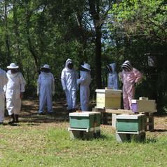 Beekeeping Class 2016