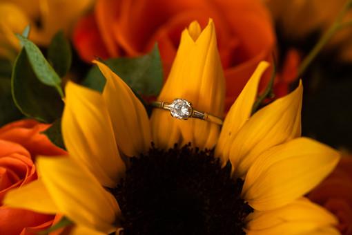 Nikki Wedding-1.jpg