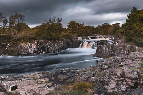 Low Force 1