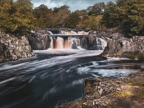 Low Force - 1