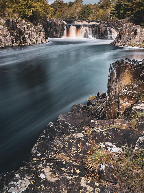 Low Force - 2