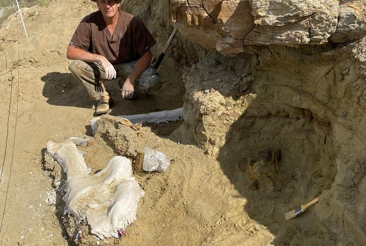 Dragon's nest Hadrosaur site