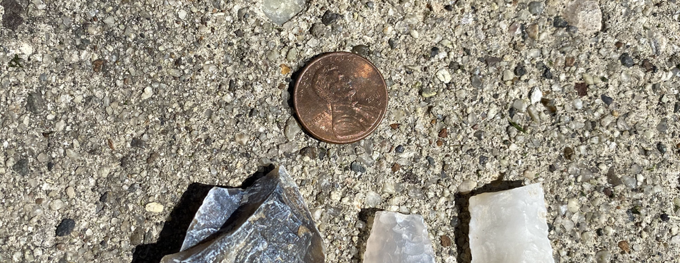 All found in one day!